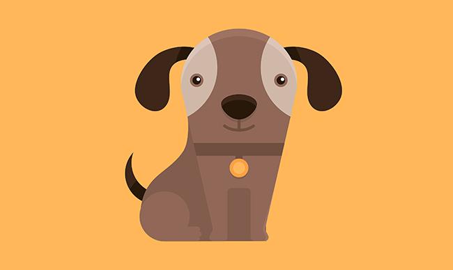 Дрессировка щенка и решения проблем