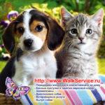 WalkService